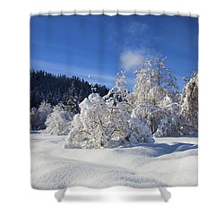 Winter Blanket Shower Curtain by Mike  Dawson