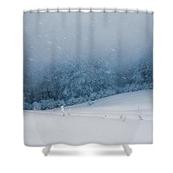 Winter Blizzard Shower Curtain by Evgeni Dinev