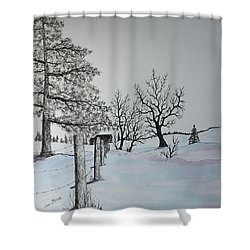 Winter Blues Shower Curtain by Jack G  Brauer