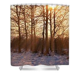 Winter Break Shower Curtain by Wim Lanclus