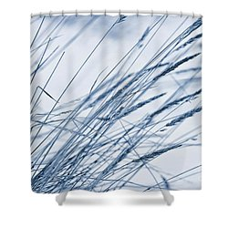 Winter Breeze Shower Curtain by Priska Wettstein