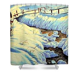 Winter Brook Shower Curtain