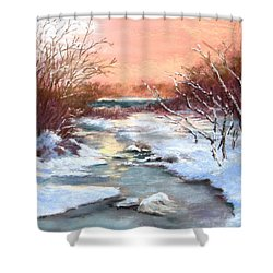 Shower Curtain featuring the painting Winter Brook by Jack Skinner