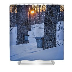 Winter Buckets Shower Curtain