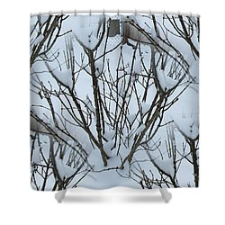 Winter Bush Tree Shower Curtain