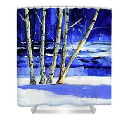Shower Curtain featuring the painting Winter By The River by Nancy Merkle