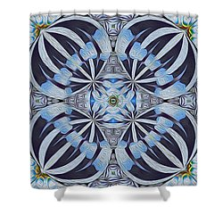 Winter Carnivale Shower Curtain by Jim Pavelle