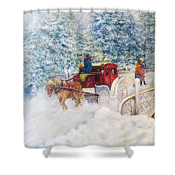 Winter Carriage In Central Park Shower Curtain