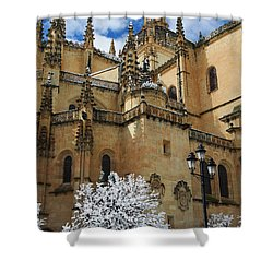 Winter Cathedral Shower Curtain