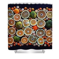 Winter Citrus Mosaic Shower Curtain