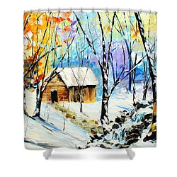 Winter Colors Shower Curtain