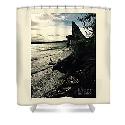 Winter Comes To The Sea Shower Curtain