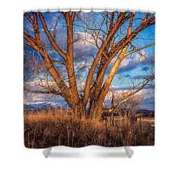 Winter Cottonwood Ranch Landscape Colorado Shower Curtain