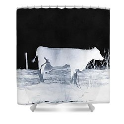 Shower Curtain featuring the photograph Winter Cow - Cow by Janine Riley