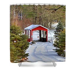 Winter Crossing Shower Curtain by Evelina Kremsdorf