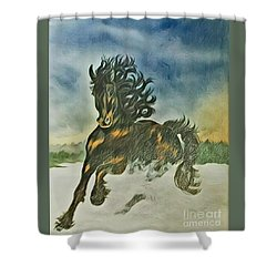 Winter Dance Shower Curtain