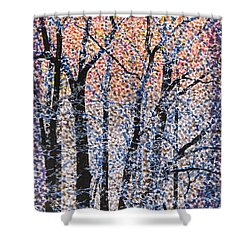 Winter Dawn  Shower Curtain