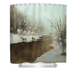 Winter Deer Run Shower Curtain by Chris Fraser