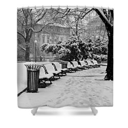 Winter Down The Path Shower Curtain by Rae Tucker