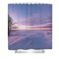 Winter Dreams Shower Curtain
