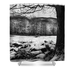 Shower Curtain featuring the photograph Winter Dreary by Bill Wakeley
