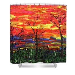Winter Evening Shower Curtain by Erik Tanghe
