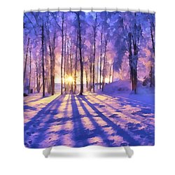 Winter Fairy Tale Shower Curtain