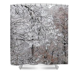 Winter Fantasy Shower Curtain by Craig Walters