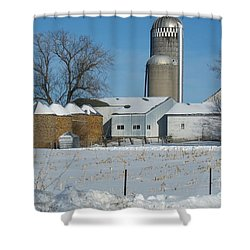 Winter Feed Shower Curtain by Kathie Chicoine