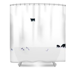 Winter, Feed Zone Shower Curtain
