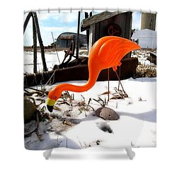 Winter Flamingo Shower Curtain