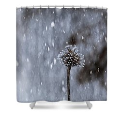 Winter Flower Shower Curtain