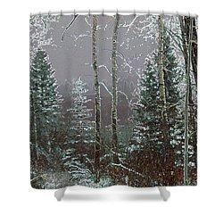Winter Fog Shower Curtain by Stuart Turnbull
