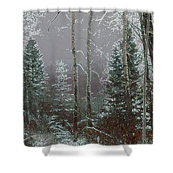 Shower Curtain featuring the digital art Winter Fog by Stuart Turnbull