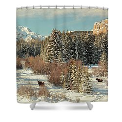 Wyoming Winter Shower Curtain