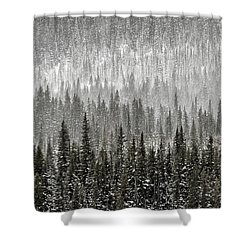 Winter Forest Shower Curtain by Brad Allen Fine Art