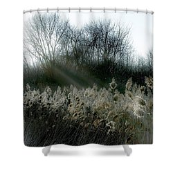 Shower Curtain featuring the photograph Winter Fringe by Kendall McKernon