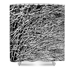 Shower Curtain featuring the photograph Winter by Gert Lavsen