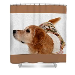Winter Girl Painted Portrait Shower Curtain