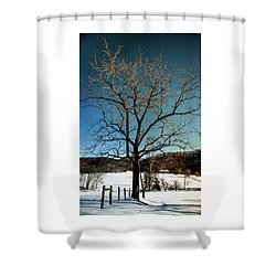 Shower Curtain featuring the photograph Winter Glow by Karen Wiles