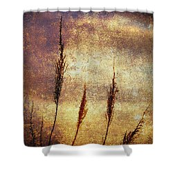 Winter Gold Shower Curtain by Skip Nall