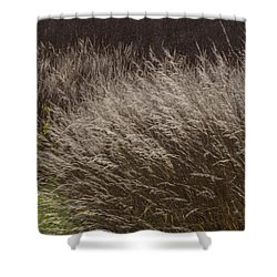 Winter Grass Shower Curtain