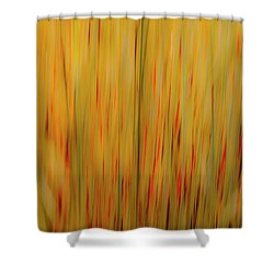 Winter Grasses #1 Shower Curtain