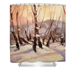 Winter Grove Shower Curtain