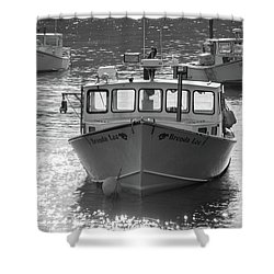 Winter Harbor, Maine  Shower Curtain by Trace Kittrell