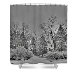 Shower Curtain featuring the digital art Winter Harmony by Teresa Schomig