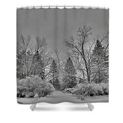 Winter Harmony Shower Curtain by Teresa Schomig