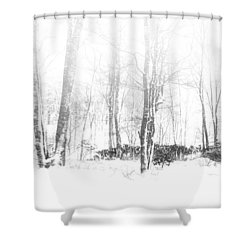 Snowy Forest - North Carolina Shower Curtain