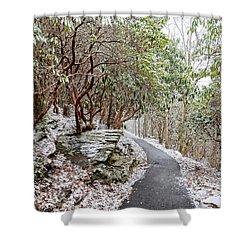 Winter Hiking Trail Shower Curtain by Susan Leggett