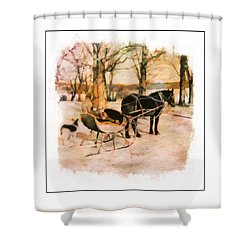 Winter Horse Sled Shower Curtain
